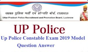 Up Police Main Exam Answer Key In Pdf