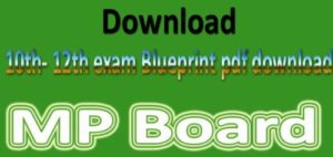 MP Board 12th Geography Sample Paper 2019 Blue Print